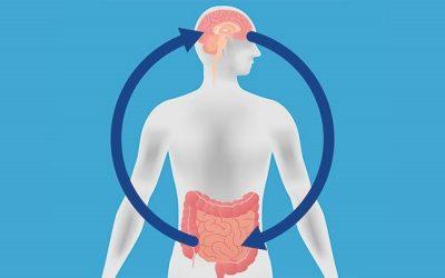 Conexión cuerpo-cerebro  y autismo