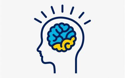 Neuroplasticidad, oído y entrenamiento cerebral